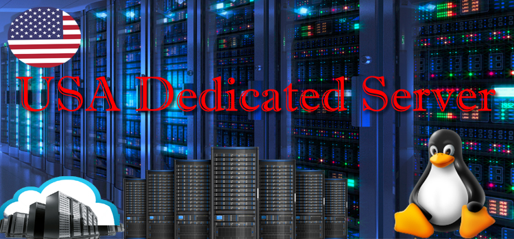 usa dedicated server
